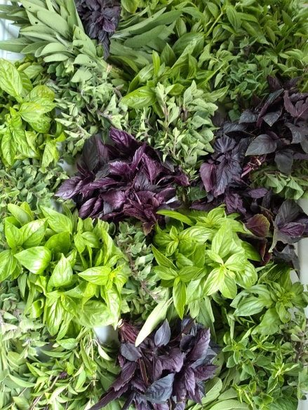 Herb Bunches | Jupiter Ridge Farm