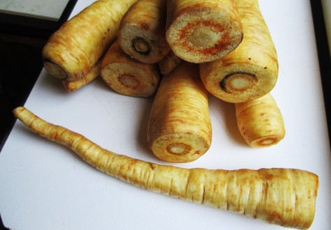 Sliced Parsnips | Jupiter Ridge Farm