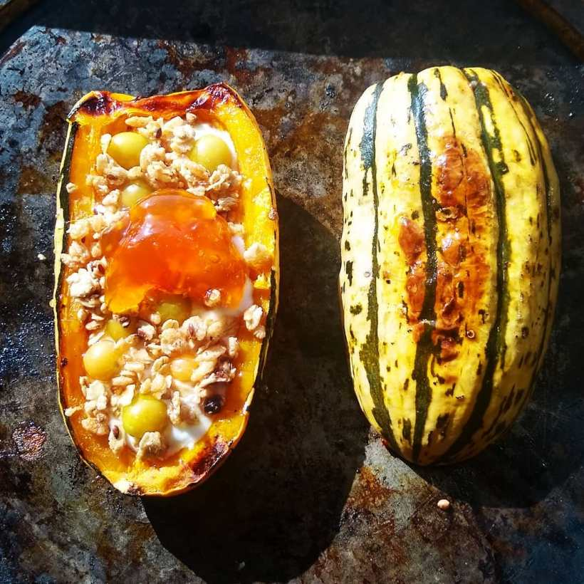 Breakfast Delicata | Jupiter Ridge Farm